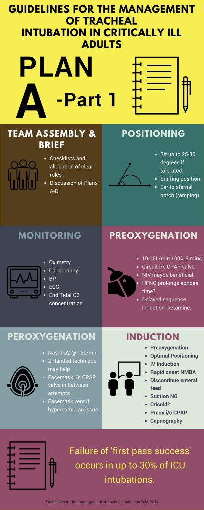 Mechanical Ventilation- Peak Pressure and Plateau Pressure